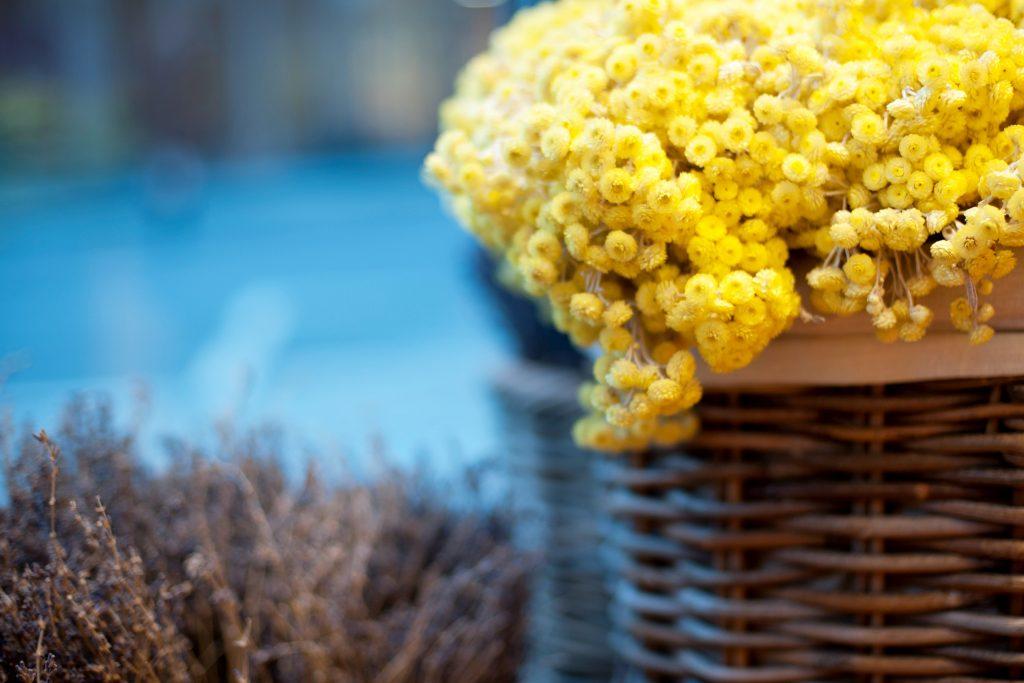 L'Occitane_Boutique_Flowers